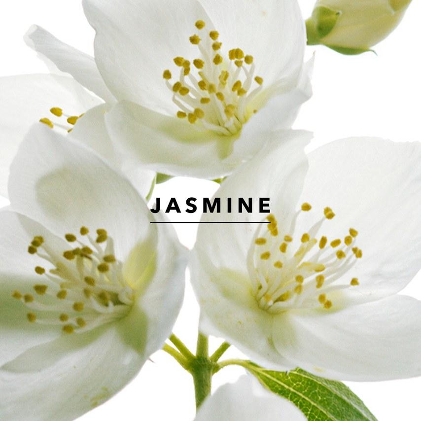 Wedding Chapel – Think Jasmine